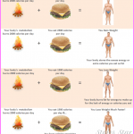 Diet Tips For Quick Weight Loss_11.jpg
